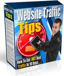 Product picture Website Traffic Tips